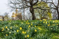 Paesaggio della primavera del parco di patterson con i fiori a Baltimora marzo Fotografie Stock Libere da Diritti