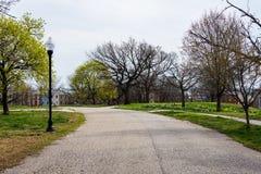 Paesaggio della primavera del parco di patterson con i fiori a Baltimora marzo Fotografia Stock Libera da Diritti