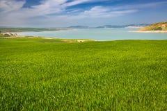 Paesaggio della primavera intorno alla diga Idriss, Marocco Fotografie Stock