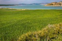 Paesaggio della primavera intorno alla diga Idriss, Marocco Immagine Stock