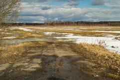 Paesaggio della primavera, l'ultima neve nei posti isolati Latifoglie senza foglie Acqua della colata dalla neve Fotografie Stock