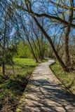 Paesaggio della primavera, sentiero per pedoni di legno attraverso la natura immagini stock