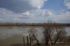 Paesaggio della primavera in Siberia sul fiume fotografia stock