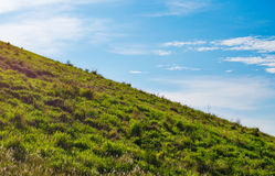 Paesaggio della primavera sotto cielo blu Immagini Stock Libere da Diritti
