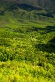 Paesaggio della primavera, strada panoramica delle colline pedemontana immagini stock