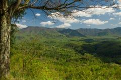 Paesaggio della primavera, strada panoramica delle colline pedemontana, TN immagine stock libera da diritti