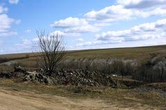 Paesaggio della primavera sui precedenti degli altopiani all'aperto Immagini Stock