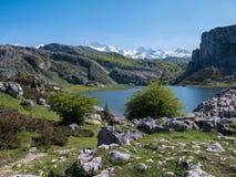 Paesaggio della primavera vicino ai laghi covadonga e al cov dei picchi di montagna immagine stock