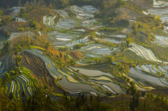 Paesaggio della provincia di Yunnan della Cina Immagini Stock Libere da Diritti