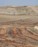 Paesaggio della Puglia con il campo bruciato Immagini Stock