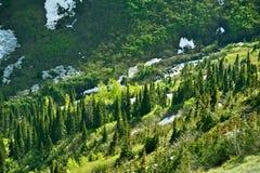 Paesaggio della regione selvaggia del Montana Fotografia Stock Libera da Diritti