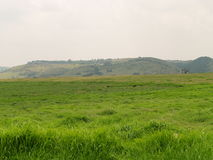 Paesaggio della riserva naturale di Krugersdorp Fotografie Stock Libere da Diritti