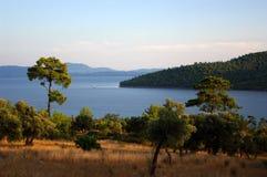 Paesaggio della riva del fiume immagini stock