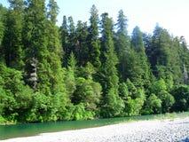 Paesaggio della riva del fiume Fotografia Stock