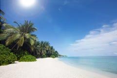 Paesaggio della riva dell'oceano Immagine Stock Libera da Diritti