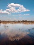 Paesaggio della sorgente Immagine Stock Libera da Diritti