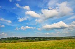 Paesaggio della sorgente Immagine Stock