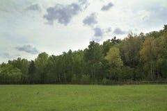 Paesaggio della sorgente Fotografie Stock Libere da Diritti