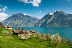 Paesaggio della sorgente nel lago lucern Fotografia Stock Libera da Diritti