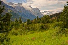 Paesaggio della sosta nazionale del ghiacciaio, Montana Fotografia Stock Libera da Diritti