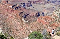Paesaggio della sosta nazionale del grande canyon, Arizona, S.U.A. Fotografia Stock Libera da Diritti