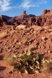 Paesaggio della sosta nazionale di Canyonlands Fotografia Stock