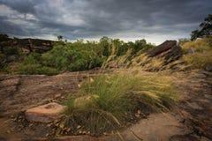 Paesaggio della sosta nazionale di Kakadu, Australia Fotografia Stock Libera da Diritti