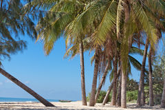 Paesaggio della spiaggia del mare fotografia stock