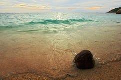Paesaggio della spiaggia del mare - la noce di cocco, sabbia, fluttua - Thail Fotografia Stock