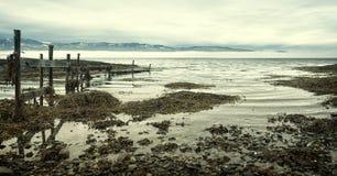 Paesaggio della spiaggia di inverno Immagine Stock