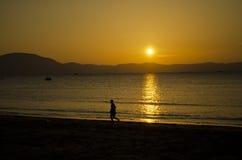 Paesaggio della spiaggia - documento Let Fotografie Stock