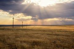 Paesaggio della steppa di mattina Fotografia Stock