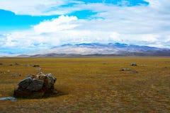Paesaggio della steppa un il pezzo di roccia nella priorità alta Fotografie Stock
