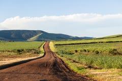 Paesaggio della strada aziendale Fotografie Stock Libere da Diritti