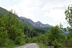 Paesaggio della strada campestre della montagna bello Fotografie Stock Libere da Diritti
