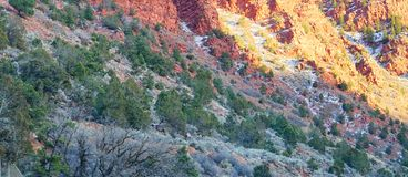 Paesaggio della strada principale di Colorado Fotografie Stock