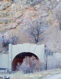 Paesaggio della strada principale di Colorado Immagini Stock