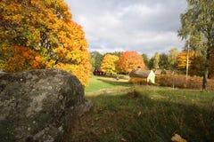 Paesaggio della Svezia dalla cima dell'albero della natura della collina durante l'autunno Fotografie Stock Libere da Diritti