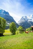 Paesaggio della Svizzera Fotografia Stock Libera da Diritti