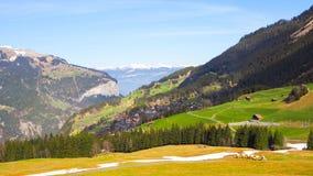 Paesaggio della Svizzera con il fondo del cielo blu Fotografia Stock Libera da Diritti