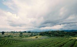 Paesaggio della Tailandia del Nord Immagini Stock Libere da Diritti