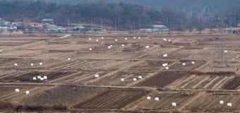 Paesaggio della terra dell'azienda agricola dopo il raccolto Immagine Stock