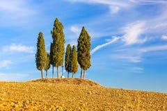 Paesaggio della Toscana fotografia stock libera da diritti
