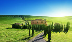 Paesaggio della Toscana con la casa tipica dell'azienda agricola Immagini Stock Libere da Diritti