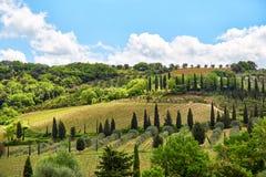 Paesaggio della Toscana, Toscana, Italia Immagine Stock