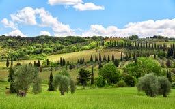 Paesaggio della Toscana, Toscana, Italia Immagine Stock Libera da Diritti