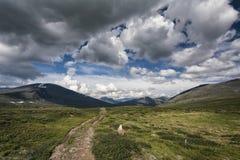 Paesaggio della tundra in Svezia del Nord Fotografia Stock