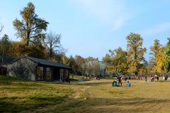 Paesaggio della valle del ginkgo biloba fotografie stock libere da diritti