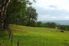 Paesaggio della valle della montagna, Australia Fotografia Stock Libera da Diritti