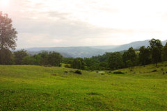 Paesaggio della valle della montagna, Australia Immagine Stock Libera da Diritti